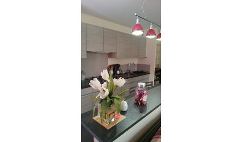 cuisine-luminaires-roses-rueil